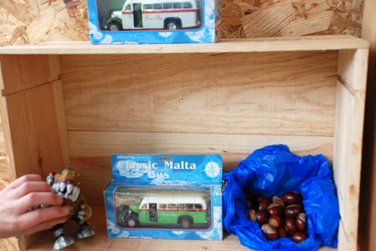 collection with conkers
